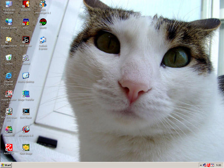 Milly on desktop by TeoB