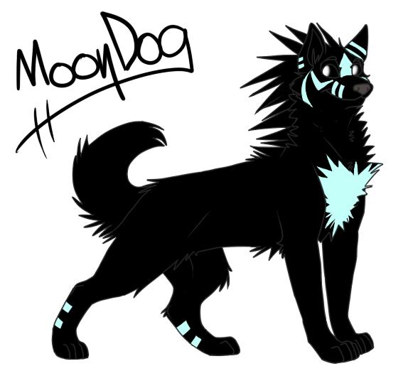 Moondog by foxee-kee