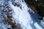Snow Dragon by kwills84