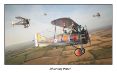 Silverwing Patrol by itifonhom