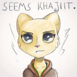 Seems Khajiit by LeDommk