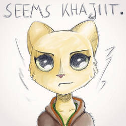 Seems Khajiit by LeDommk