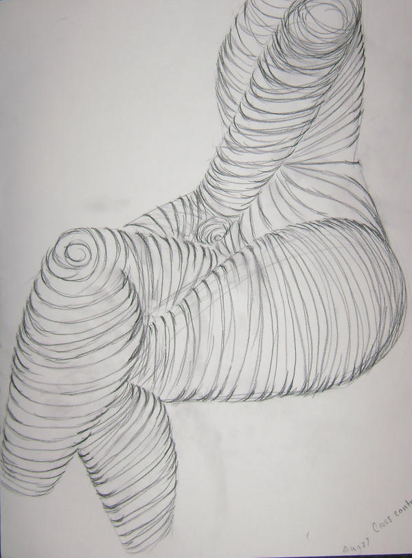 Contour Line Drawings Of Figures Or Objects : Cross contour figure drawing