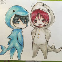 Chibi Dolphin!Haru and Shark!Rin