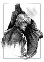 Follow me, Draco. by Ognivik