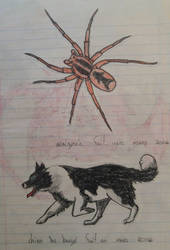 Spider and dog by Lightythedreamer