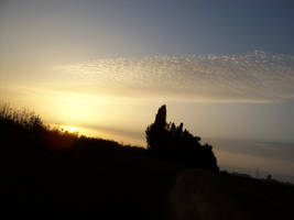 A Farewell to the Sun