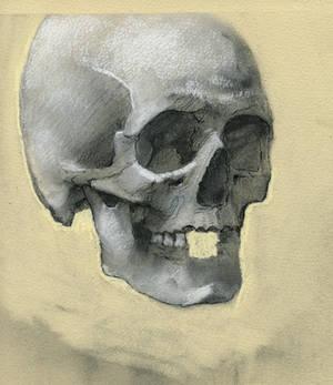 Skeleton Head