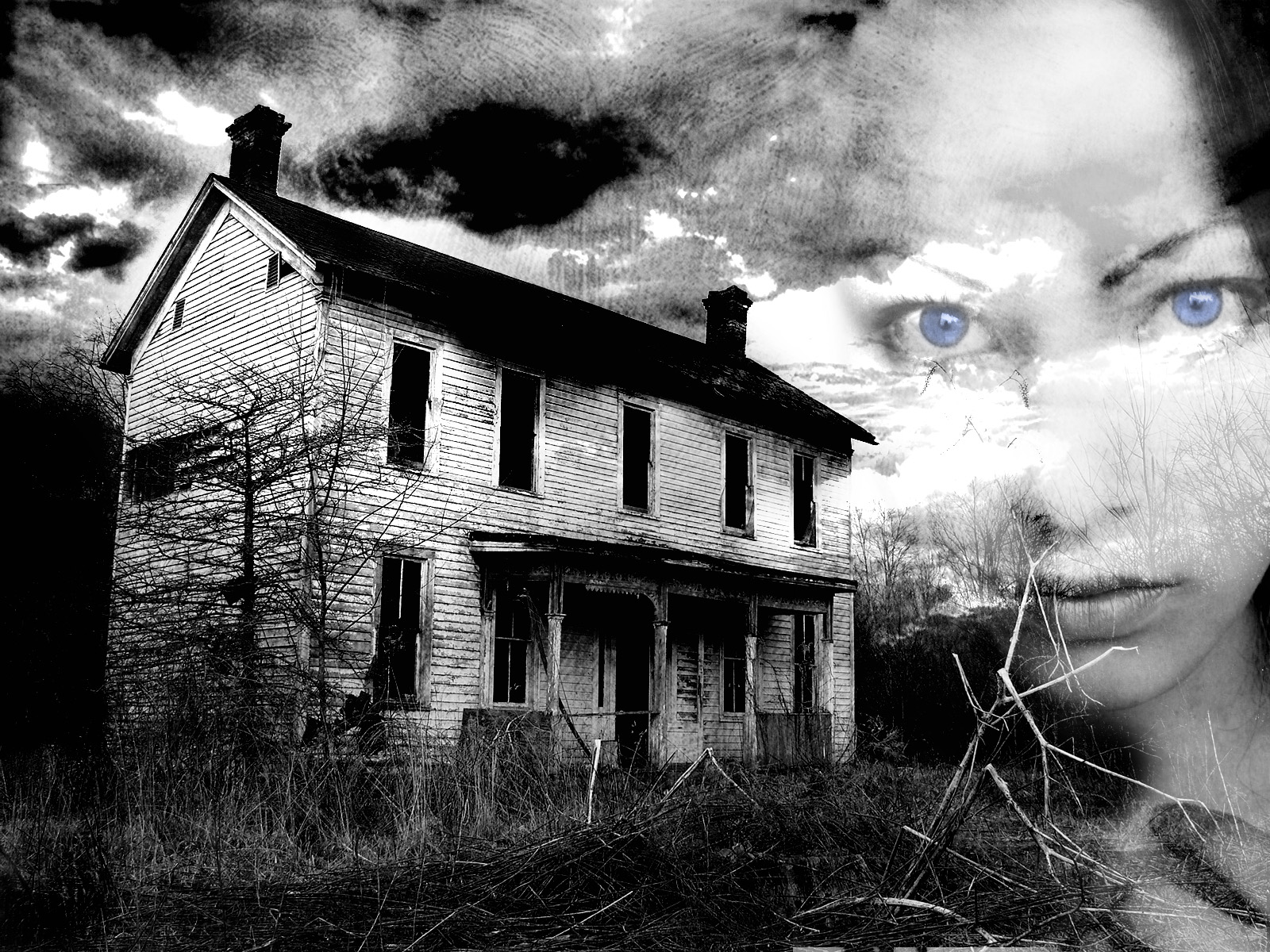 http://orig07.deviantart.net/c3cf/f/2007/320/2/5/ghost_house_2_by_arxetypo.jpg