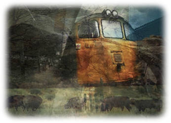 Trainspotting by bellarie