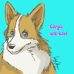 Corgis are cool