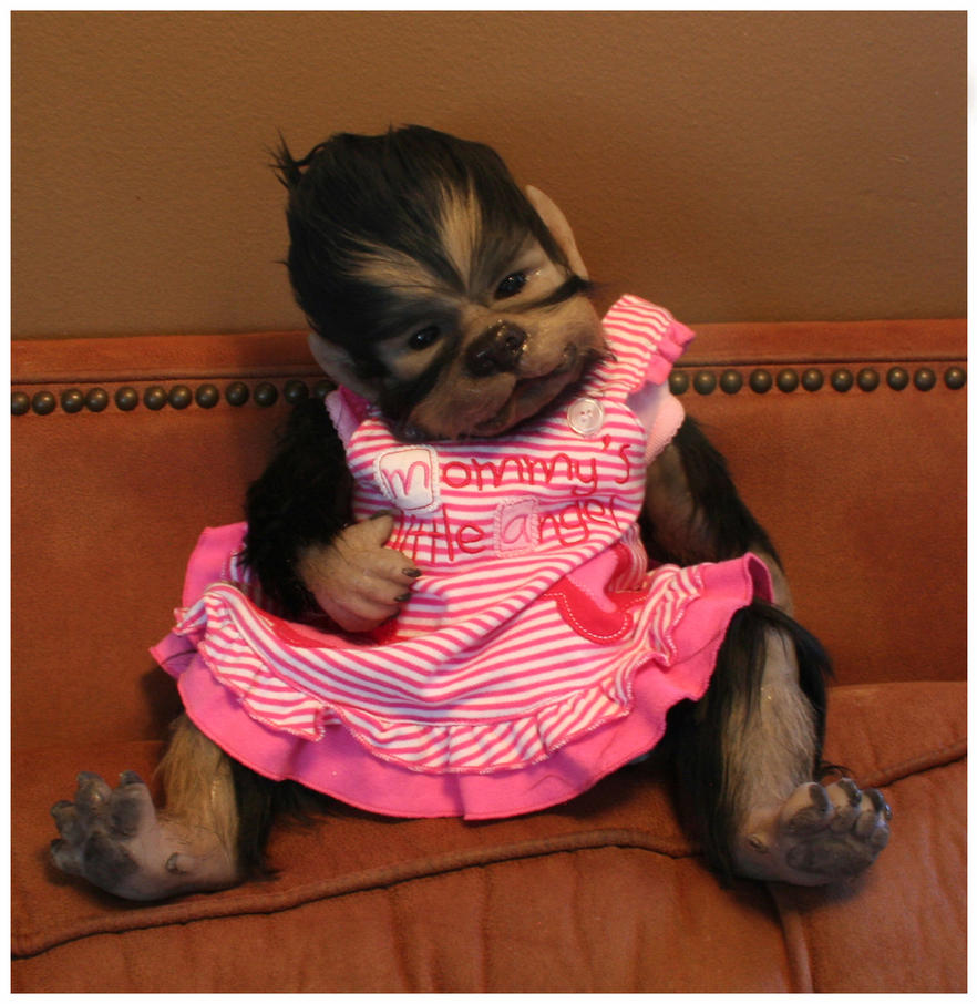 baby girl WerePup by WerePups
