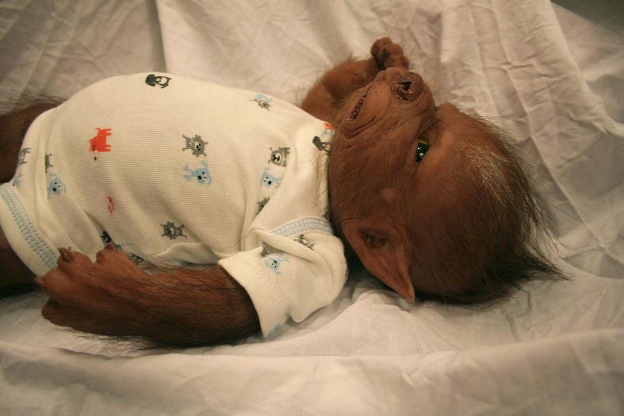 Werewolf Toys For Boys : Little baby werewolf boy by werepups on deviantart