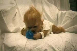 Liam John the baby werewolf pup by WerePups