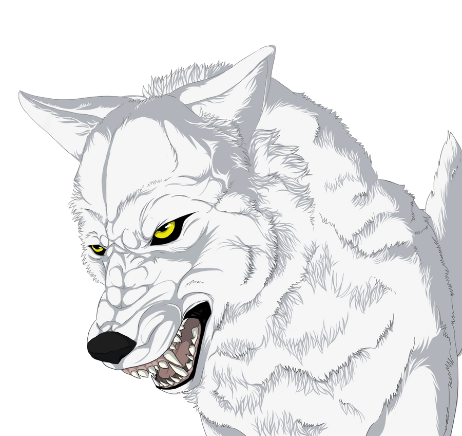 +Wolfs Rain+ by Veil-Wolf on DeviantArt