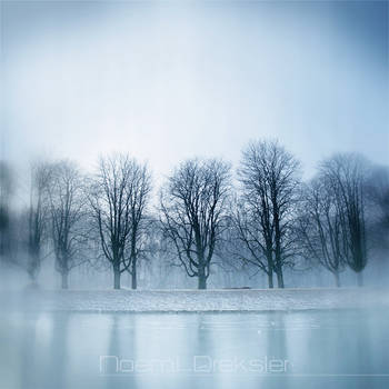 Lined Up In Ice by noemia