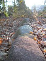 Path of Rocks by lizskie