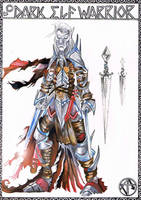 Dark Elf Warrior by unrested