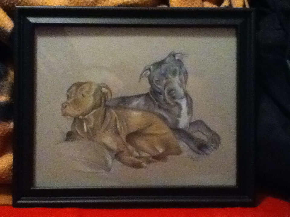 Pitt Bull Commission by acdcfan1234