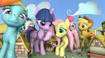 Big Ponies In Town