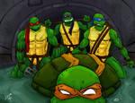 Turtles by LucasDuimstra
