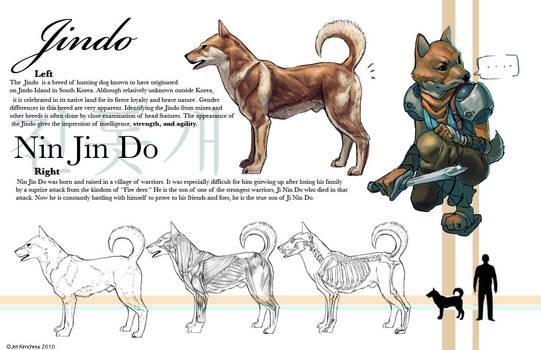 Dog Jindo Study