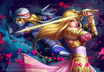 Hyrule Warriors - The Princess and her Shadow