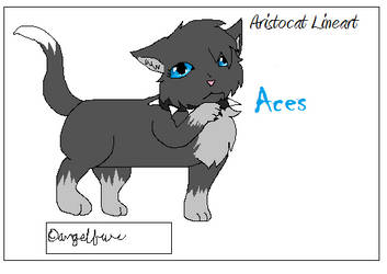 Aces the Aristocat