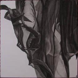 Unreliable veil by Zahorbenskyi