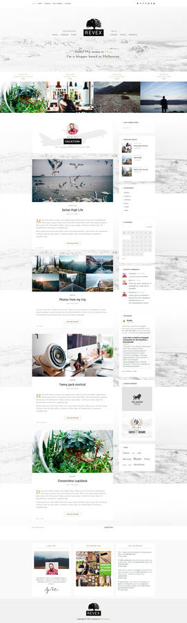 REVEX - Personal WordPress Blog Theme