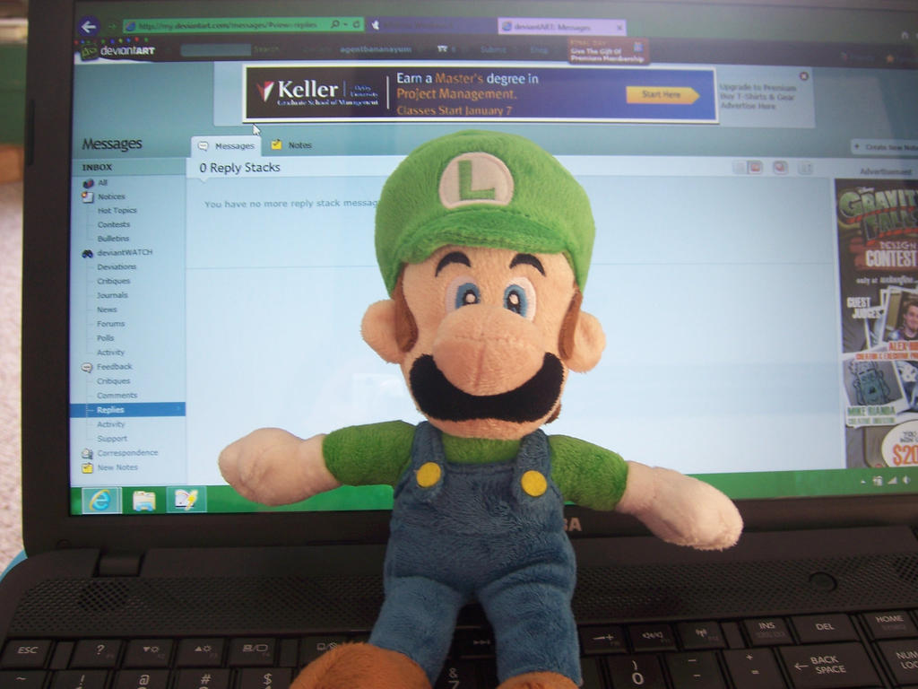 My Luigi Plushie! by agentbananayum