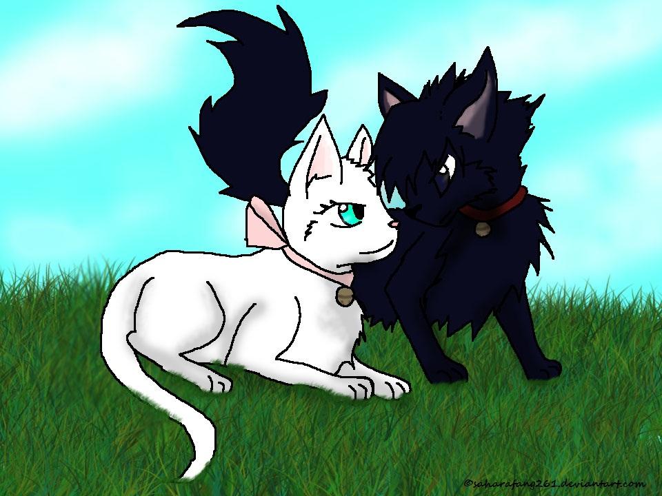 sasuke and sakura meet nine tails