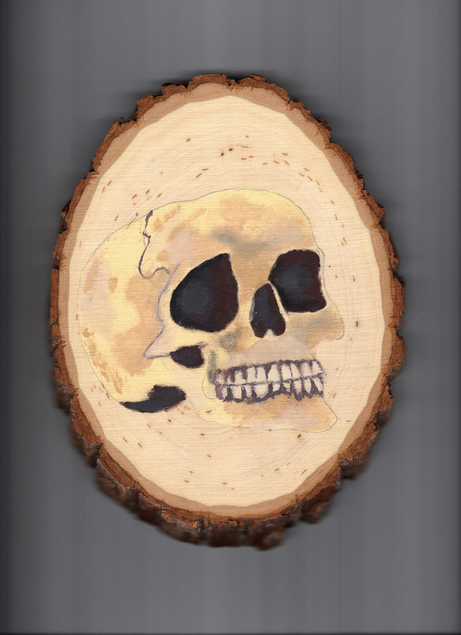 Skull by englishdisco