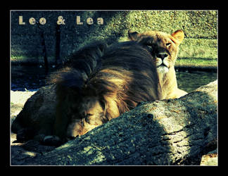 Leo and Lea by DeBeerG