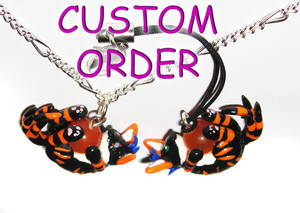 Custom Order Necklace n Charm
