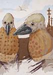 Two 'Monkbird' Gentlemen
