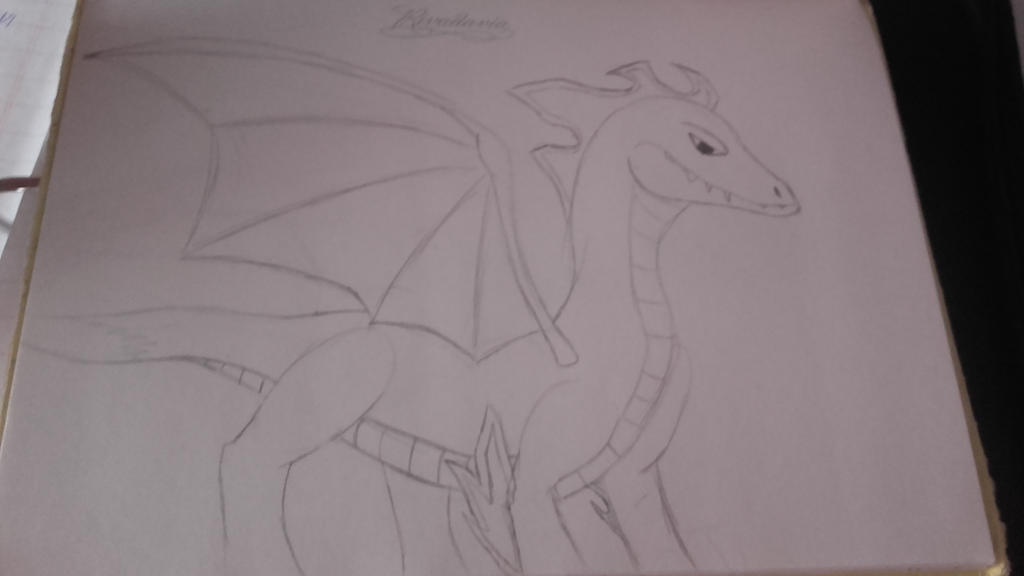 Dragon by Mikal04-12