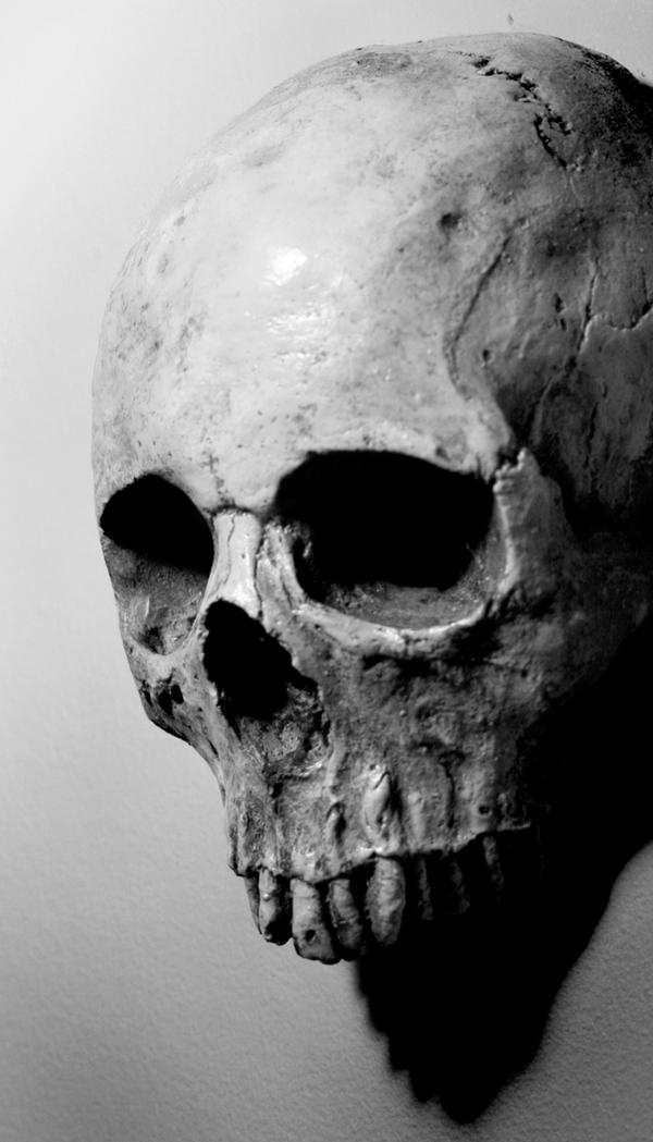 Stock: Skull 7 by TamvakisPhoto