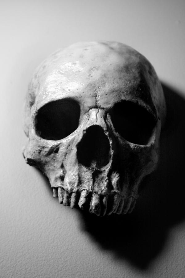 Stock: Skull 10 by TamvakisPhoto