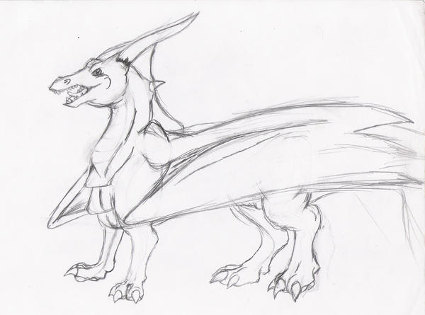 . : + Dragon Sketch + : . by Wolfbeauty