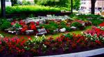 Ottawa Garden