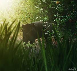 Panther by Nikola096