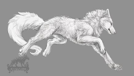 YCH ! Wolf (OPEN) by ArkyiVolg