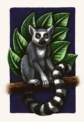 Lemur by ArkyiVolg