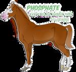 RCB Phosphate