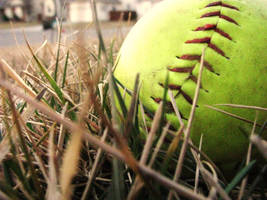 Softball in the Grass