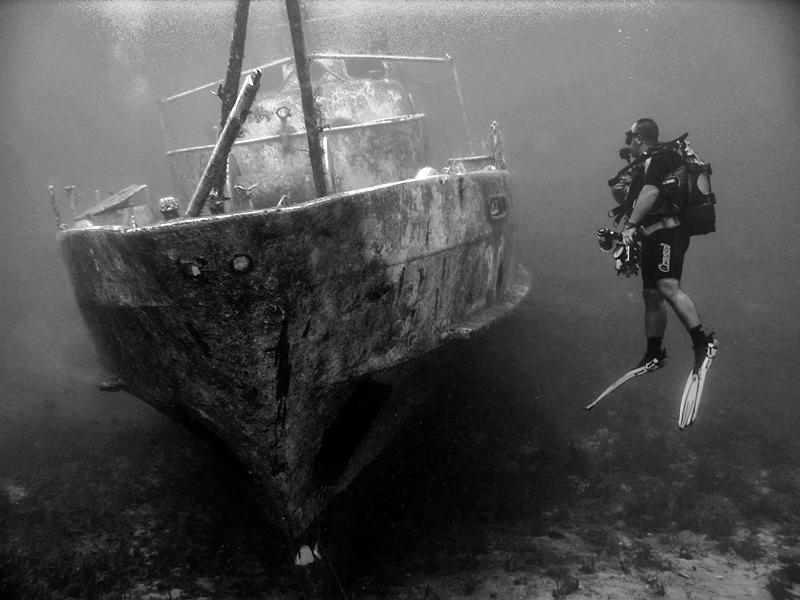 underwater id by tamergunal