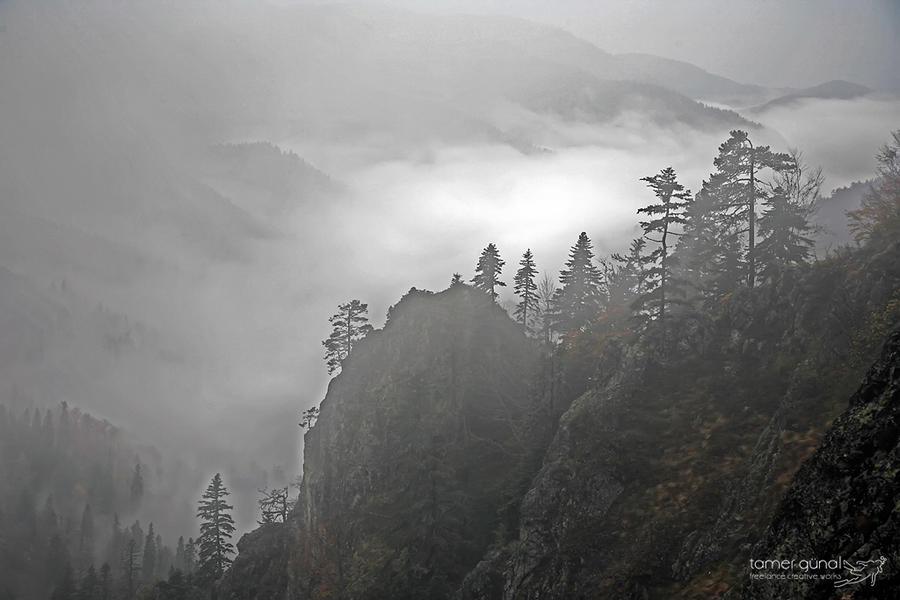 mist... by tamergunal