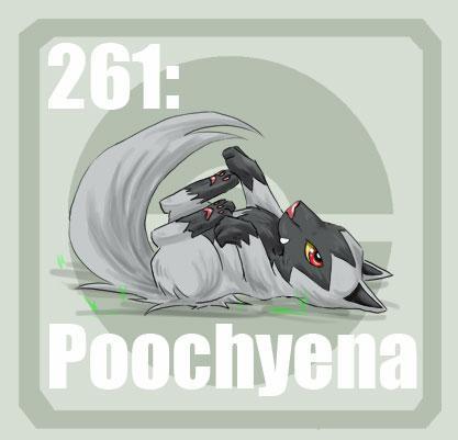 le compte en image - Page 9 261_Poochyena_by_Pokedex