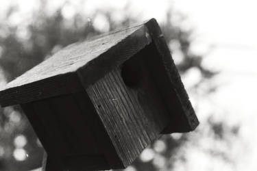 Birdhouse by stoneage11